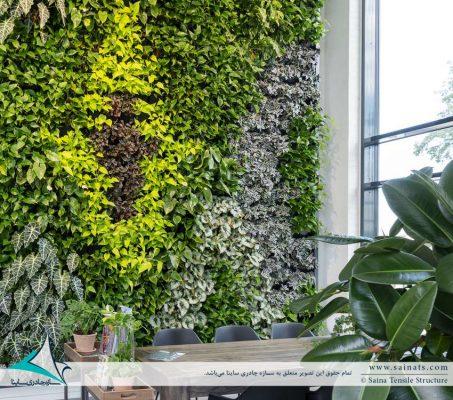 دیوار سبز   گرین وال   green wall